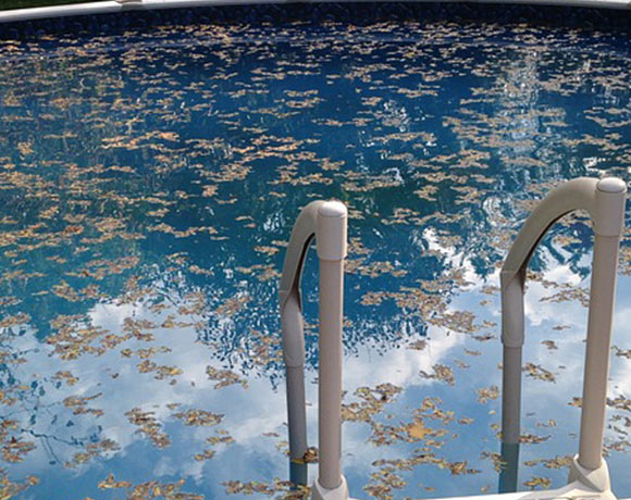 a swimming pool needs maintenance