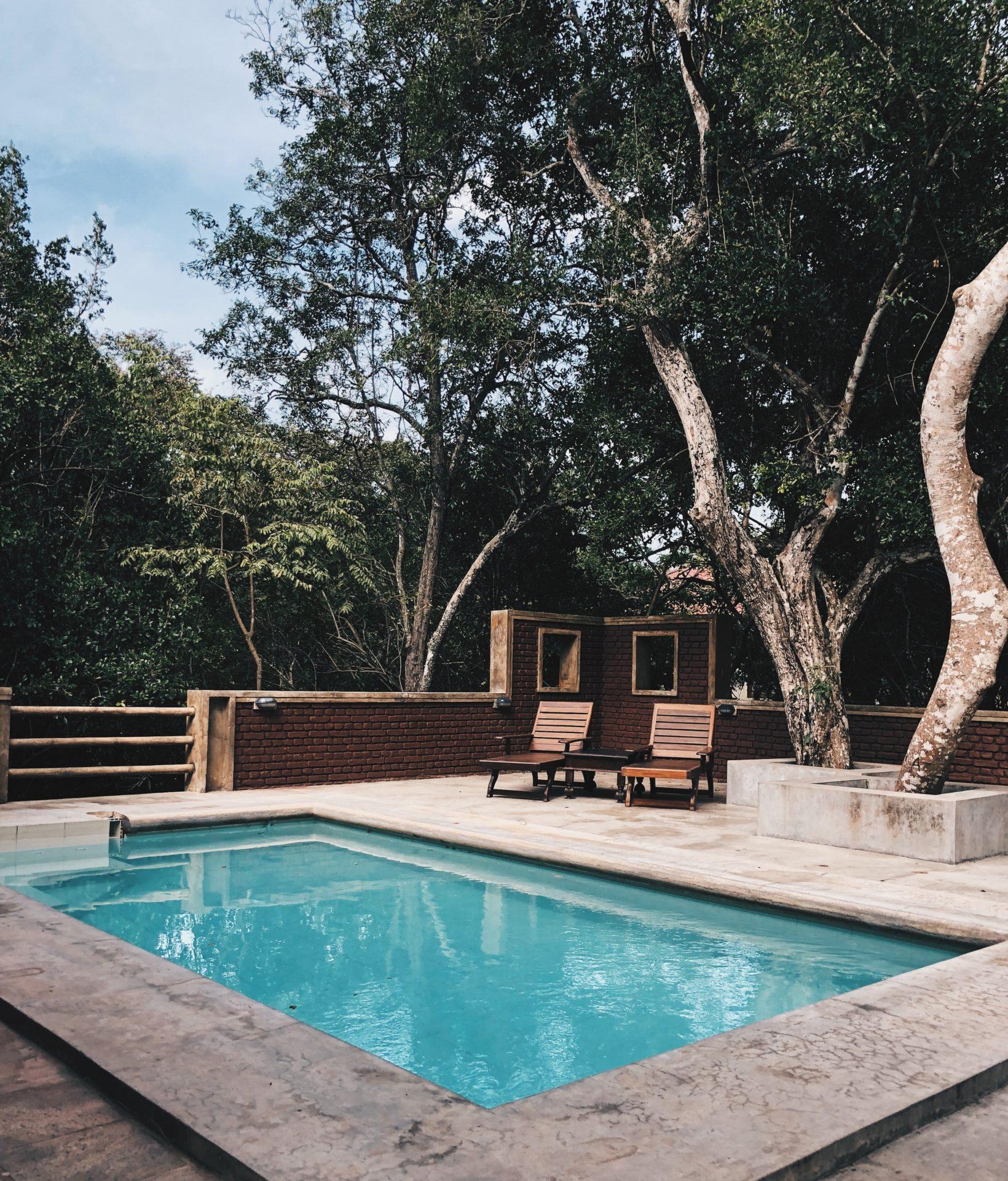 swimming pool in backyard with trees overhead